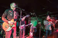 Book Camper Van Beethoven for your next corporate event, function, or private party.