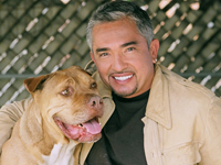 Book Cesar Millan for your next corporate event, function, or private party.