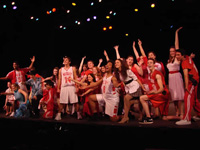 Book Disney's High School Musical Summer Celebration for your next corporate event, function, or private party.