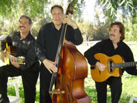 Book Gypsy Swing Cats for your next corporate event, function, or private party.