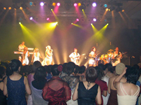 Book ABsalute Gold - ABBA Tribute for your next corporate event, function, or private party.