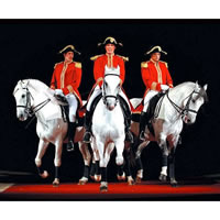 Book World Famous Lipizzaner Stallions for your next corporate event, function, or private party.
