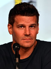 Book David Boreanaz for your next corporate event, function, or private party.