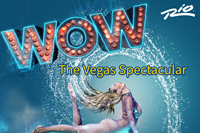 Book WOW-The Vegas Spectacular for your next corporate event, function, or private party.