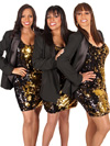 Book Sounds Of The Supremes for your next corporate event, function, or private party.