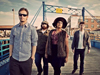 Book Alabama Shakes for your next event.