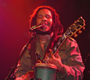 Book Stephen Marley for your next event.
