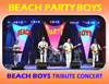 Book Beach Party Boys- Beach Boys Tribute for your next event.