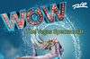 Book WOW-The Vegas Spectacular for your next event.